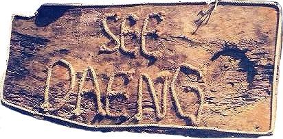 Seedaeng-loga-11